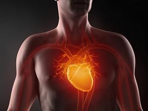 Сердце после инфаркта смогут восстановить полностью