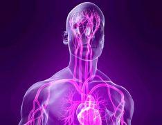 Вегетососудистая дистония как проявление заболеваний щитовидной железы