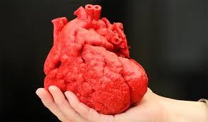 Ученые научились создавать модели сердец на 3D принтерах