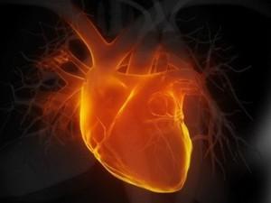 55-летние россияне умирают от болезней сердца чаще, чем 75-летние французы