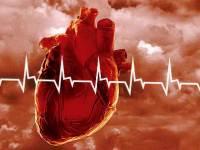 Витамин D не способен защитить от инфаркта и инсульта.