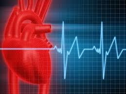 Что нужно знать о сердечной аритмии