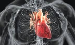 Ингибитор фактора некроза опухоли снижает риск развития инфаркта миокарда при псориазе