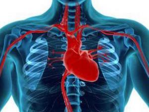 Диета при сердечных проблемах