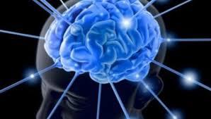 Эксперты объяснили, что способствует деградации мозга человека