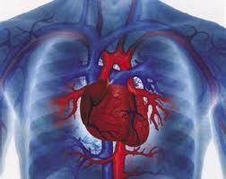 Женское сердце болит по-другому