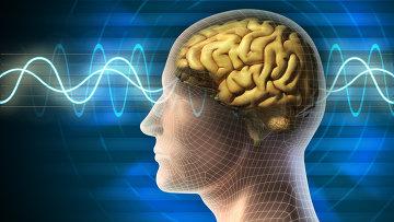 Исследование: специалисты нашли способ восстанавливать память людей