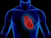 Минздрав предпримет комплексные меры по снижению смертности от сердечно-сосудистых заболеваний среди россиян