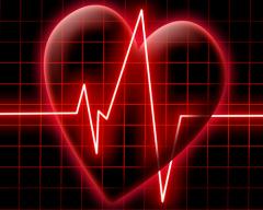 Живая капля: что дает сердцу «С»-комплекс