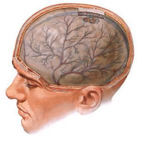 Дисциркулярная энцефалопатия
