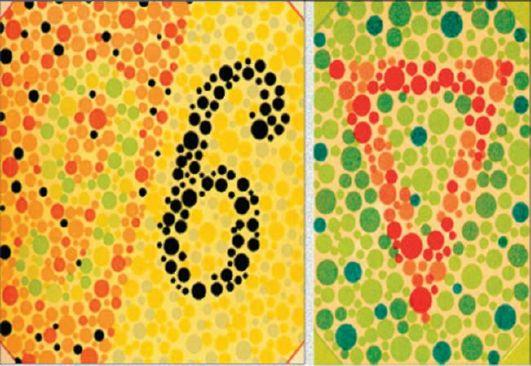 Полихроматические таблицы для исследования цветоощущения