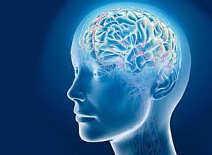 4 лучших рецепта очищения сосудов головного мозга