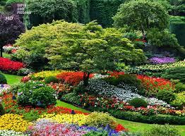 Увлечение садоводством спасет от инсульта