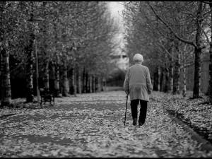 Ученые: физическая активность понемногу в течение дня защищает пожилых людей от инфаркта