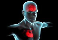 Специальное устройство защищает мозг от инсульта во время замены клапана