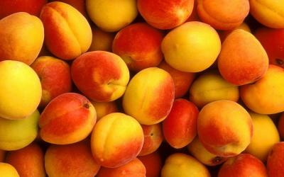 Самый полезный фрукт для сердца – абрикос