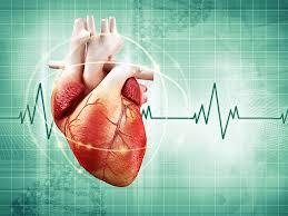 Кардиопротез Carmat позволил пациенту с сердечной недостаточностью вернуться к нормальному образу жизни