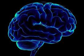 Неврологи смогли связать разрозненные воспоминания между собой