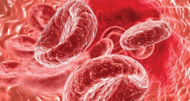Как правильно повышать гемоглобин?