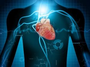 5 отличных продуктов питания для сердца