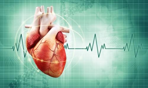 Нормальное сердцебиение в минуту