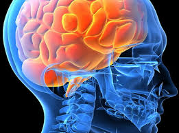 Сосудистые поражения мозга: причины, симптомы, диагностика, лечение