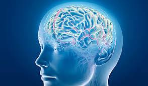 Сердечно-сосудистые заболевания могут быть причиной развития когнитивных нарушений