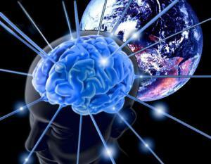 Невероятное открытие учёных о женском и мужском мозге