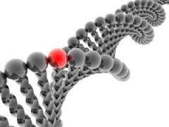 Ученые: препараты кальция не закупоривают артерии