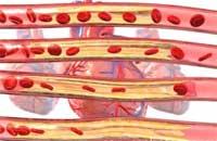 Механизм развития и симптомы ишемии