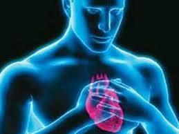 Ученые нашли способ предсказывать инфаркт