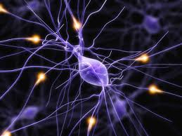 Энцефалопатия головного мозга и стволовые клетки