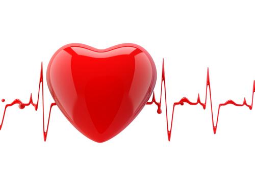 Ученые обнаружили причину сердечной аритмии