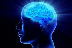 Что уменьшает мозг и портит характер
