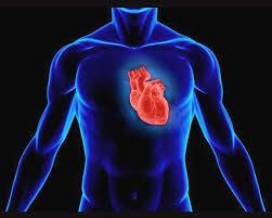 Случится ли инфаркт или инсульт