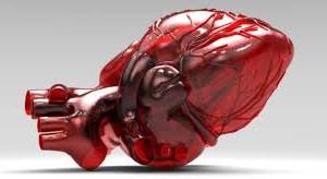 Как сберечь сердце?