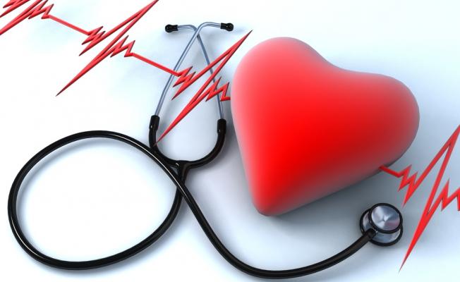 Восстановление сердца происходит благодаря клеткам коронарных артерий