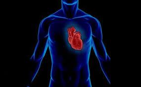Бьется сердце, горят щеки…