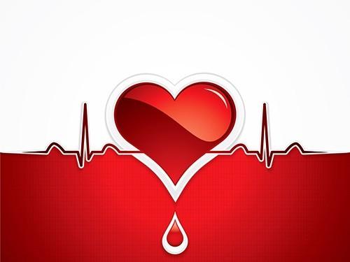 Риск развития сердечно-сосудистых заболеваний у людей с брадикардией не выше, чем у остальных