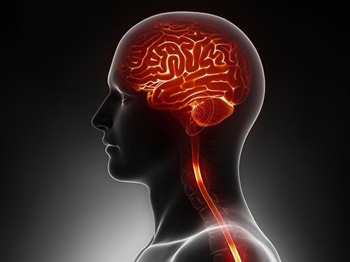 Электростимуляция головного мозга поможет быстрее восстановиться после инсульта