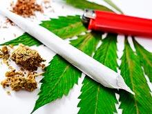 Курение конопли нарушает работу мозга, предупреждают специалисты