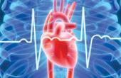 Что такое застойная болезнь сердца?