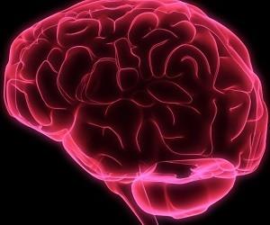 5 советов для улучшения кровоснабжения мозга