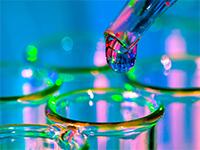Ингибиторы протонной помпы ускоряют старение сосудов