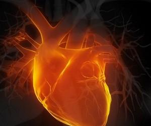Как защитить сердце в жару