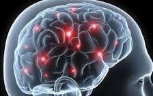 Ученые поняли, как мозг стирает воспоминания