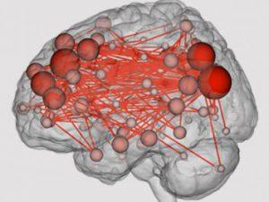 Особенности мозга заставляют людей гнаться за острыми ощущениями