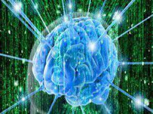 Ночная работа убивает клетки мозга