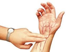 Исследования венозного пульса