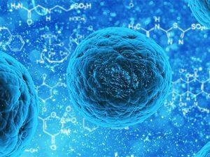 Рассеянный склероз начали лечить стволовыми клетками